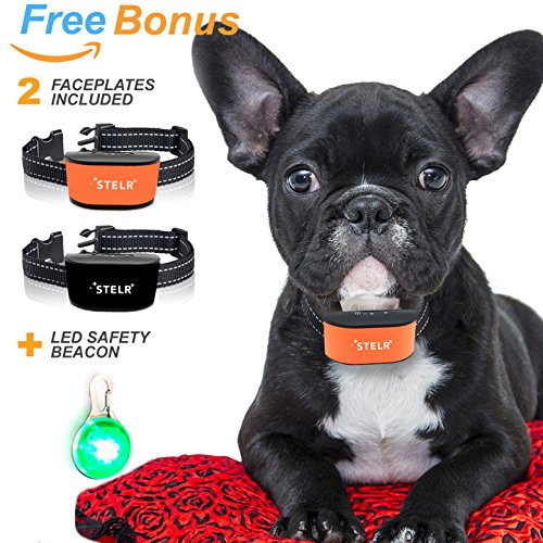 NEW Harmless Anti-Bark Collar For Small Dogs: No-Shock, Rechargeable, Weatherproof, 7 Vibration and Sound Sensitivity Levels, No Prongs by STELR