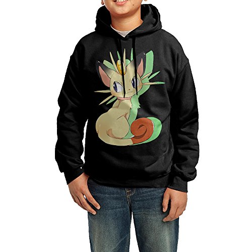 Youth (Pokemon Hoodie With Ears)