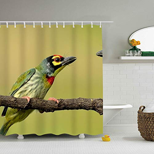 Enjoytm Shower Curtain Coppersmith Barbet Home Decor Bathroom Curtains]()