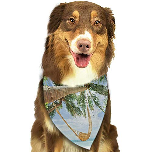 (Pet Dog Scarf Beach View of Nice Hammock with Palms by The Ocean Sandy Shore Exotic Artsy Print W27.5 xL12 Scarf for Small and Medium Dogs and Cats)