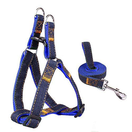 Dog Leash Harness Adjustable & Durable Leash Set & Heavy Duty Denim Dog Leash Collar for Small, Medium and Large Dog (M, Blue)