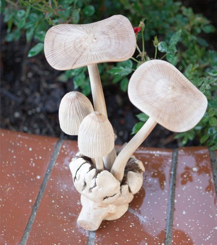 Forest Mushroom Parasite Statue Wood Art Hand Carved (Hand Carved Wood Art)