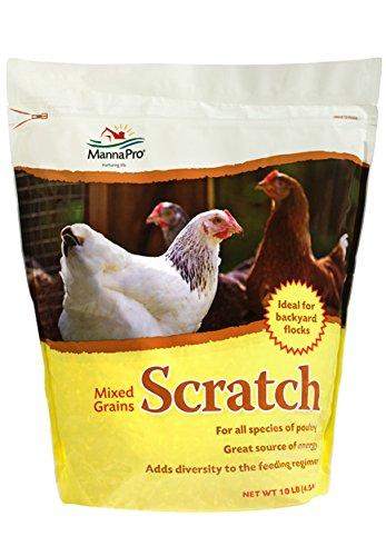 51%2BepDIgA8L - Manna Pro Mixed Grains Scratch, 10 lb