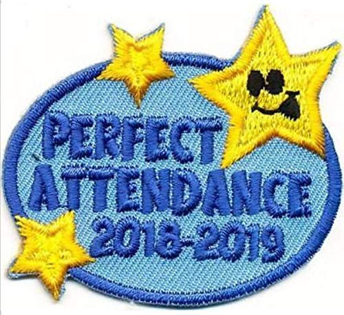 Cub Girl Boy PERFECT ATTENDANCE 2018-19 Embroidered Iron-On Fun Patch Crests Badge Scout Guides