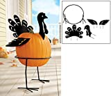 Metal Turkey Pumpkin Holder Stand - 5 pc