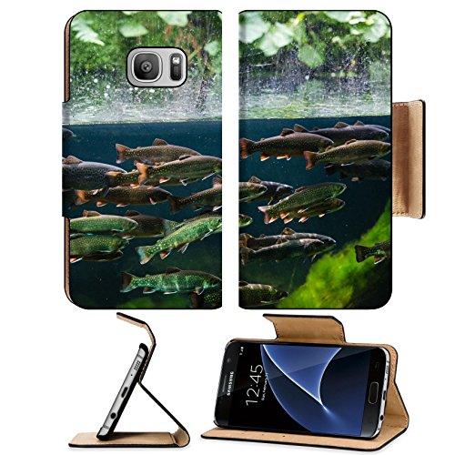 Luxlady Premium Samsung Galaxy S7 Flip Pu Leather Wallet Case IMAGE ID: 25731629 Flock of rainbow trout swimming in blue green water seen through aquarium (Tro Freshwater Fish)