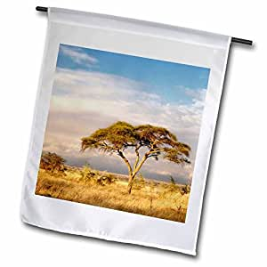 Danita Delimont - Acacia Trees - Umbrella Thorn Acacia, Tarangire National Park, Tanzania-AF45 AJE0245 - Adam Jones - 18 x 27 inch Garden Flag (fl_69524_2)