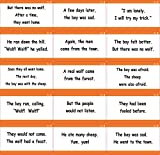 little champion reader - Long Vowel Phonics, Aesop Story Sentences - 291 X-Large Early Learning Sentence Reading Flash Cards - 1st and 2nd grade - Little Champion Reader Level 3 Sentence Reading Cards
