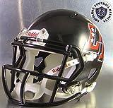 Austin Lake Travis Cavaliers 2010 - Texas High School Football MINI Helmet