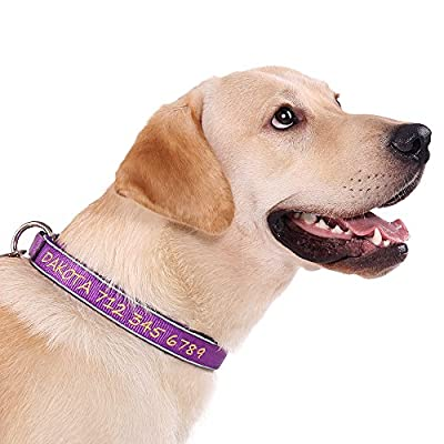 Personalized Dog Collar,Reflective Neoprene Padded Custom Collars Embroidered w/Pet Name & Phone Number,Black,Purple,Red,Blue,Green,Pink,5 Adjustable Sizes XSmall,Small,Medium,Large,XLarge