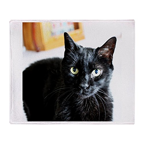 CafePress Black Kitty Cat Soft Fleece Throw Blanket, 50