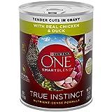 Purina ONE Natural Gravy Wet Dog Food, SmartBlend ...