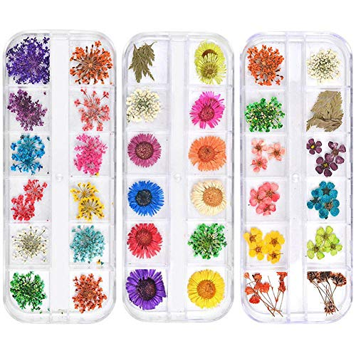 3D Nail Art Decoration, Colorful Natural Real Dry Flower Decor Sunflower Sticker DIY Nail Decoration Manicure Tool (3 Pcs)