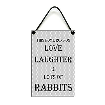 Amazoncom Rabbit Fun Gift This Home Runs On Love Laughter Lots