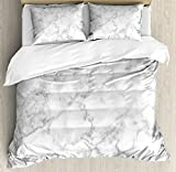 Ambesonne Marble Duvet Cover Set Queen Size by, Nature Granite Pattern with Cloudy Spotted Trace Effects Marble Artistic Image, Decorative 3 Piece Bedding Set with 2 Pillow Shams, Light Grey Dust