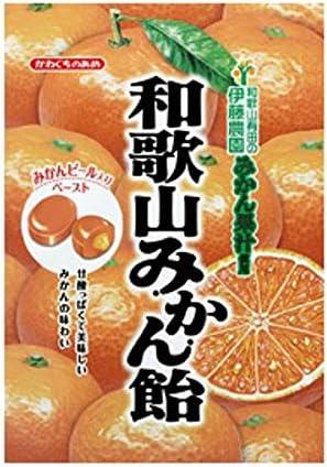 川口製菓 和歌山みかん飴 100g×40袋