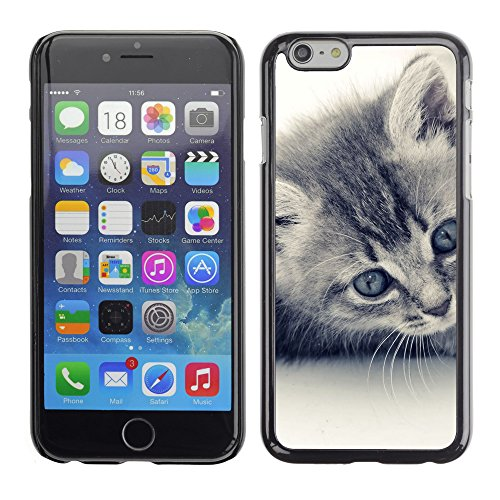 Premio Sottile Slim Cassa Custodia Case Cover Shell // V00003896 chaton doux // Apple iPhone 6 6S 6G 4.7""