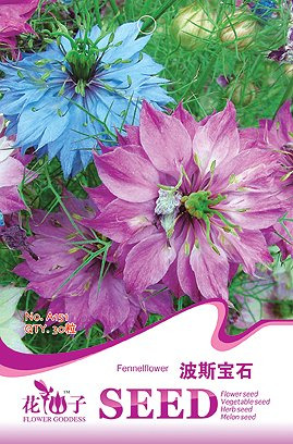 (Siam Circus Flower seeds gem seeds love-in-a-mist indoor bonsai blended-color 30 PCS / bag Original packaging Home Garden Bonsai Tree Decor)