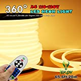 [UPGRADE] 360° LED NEON LIGHT, IEKOV™ AC 110-120V Flexible 360 Degree LED Neon Strip Lights, Dimmable & Waterproof NEON LED Rope Light + Remote Controller (65.6ft/20m, Warm White)