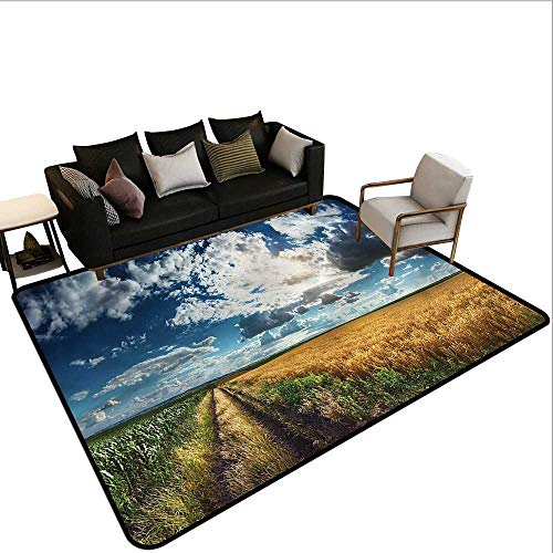 Country,Non-Slip Modern Carpet 24