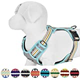 Blueberry Pet Soft & Comfy 3M Reflective Multi-colored Stripe Padded Dog Harness Vest, Chest Girth 28.5