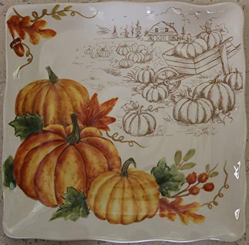 Maxcera Pumpkin Patch 11