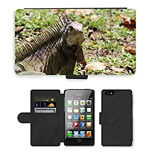hello-mobile PU LEATHER case coque housse smartphone Flip bag Cover protection // M00137600 Naturaleza Animal Colombia // Apple iPhone 4 4S 4G