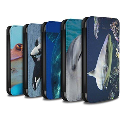 Stuff4 Coque/Etui/Housse Cuir PU Case/Cover pour Apple iPhone 4/4S / Pack 6pcs Design / Faune Marine Collection