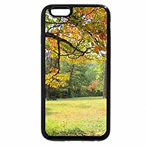 iPhone 6S / iPhone 6 Case (Black) Touches Of Autumn