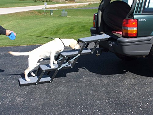 Best Dog Car Ramps For Old Or Short Dogs In 2019 Woof Whiskers