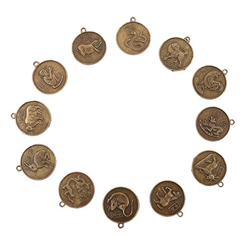 Homyl 12 Chinese Zodiac Animal Coins Feng Shui Amulet Necklace Pendant for Health