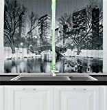 new york cafe - Landscape Kitchen Curtains by Ambesonne, Cityscape New York City in Winter Central Park Snowy Buildings Photo Art, Window Drapes 2 Panels Set for Kitchen Cafe, 55W X 39L Inches, Grey and Dimgrey