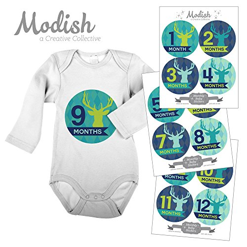 12 Monthly Baby Stickers, Deer, Antlers, Boy, Baby Belly Stickers, Monthly Onesie Stickers, First Year Stickers Months 1-12, Argyle, Teal, Lime, Blue, Navy, Woodland, Baby Boy