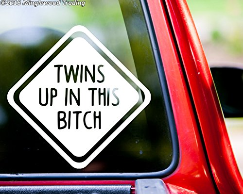 Minglewood Trading TWINS UP IN THIS BITCH Vinyl Decal Sticker 6