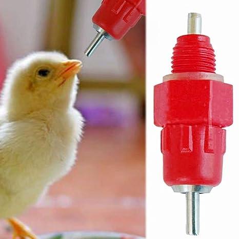 5 unidades de agua para chupete, pollo, alimentador de aves ...