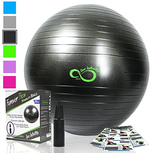 Live Infinitely Exercise Ball (55cm-95cm) Extra Thick Professional Grade Balance & Stability Ball- Anti Burst Tested Supports 2200lbs- Includes Hand Pump & Workout Guide Access Grey 65cm
