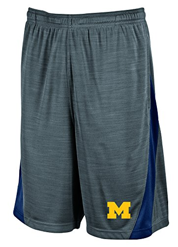 NCAA Michigan Wolverines Men's Boosted Stripe Color Blocked Training Shorts, Medium, Gray