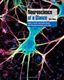 Neuroscience at a Glance (At a Glance)