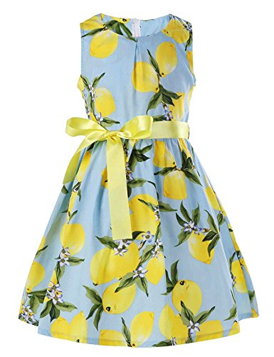 - PrinceSasa Floral Girls Dresses Size 6 Spring Dresses Clothes,lemon5,5-6 Years(130)