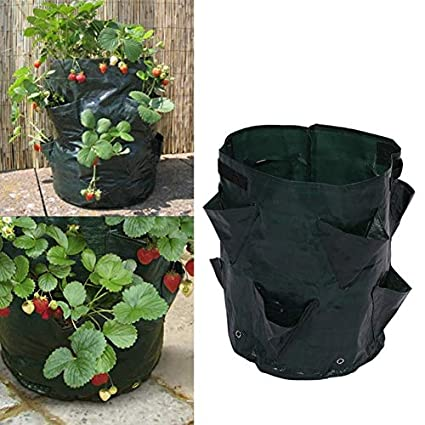 Amazon Com Grow Bags Potato Strawberry Planter Bags For Growing