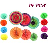 DLOnline 14 PCS Bright Colors Hanging Paper Fans,Fiesta Paper Fan Decorations,Fiesta Colorful Paper Fans,Colorful Fiesta Paper Fans,Party Decoration for Holidays,Paper pulls flowers,Paper Flowers