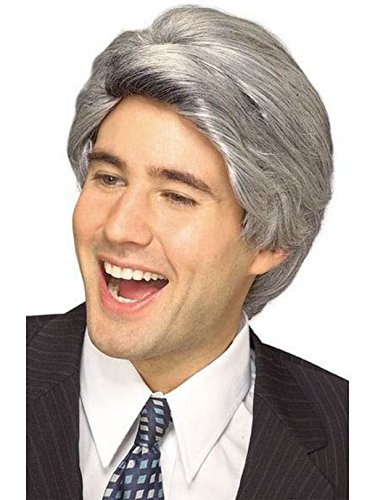 Rubie's Late Night Host Character Wig, Gray, One -