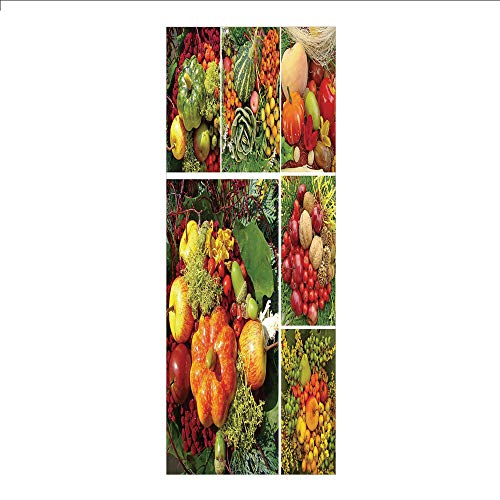 3D Decorative Film Privacy Window Film No Glue,Harvest,Photograph of Products from Various Gardens and Fields Seasonal Foods Apple Walnuts Decorative,Multicolor,for Home&Office