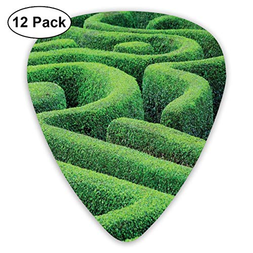 Guitar Picks - Abstract Art Colorful Designs,Green Plant Maze Growth Ecology And Nature Theme Labyrinth Landscape Outdoors City Park,Unique Guitar Gift,For Bass Electric & Acoustic Guitars-12