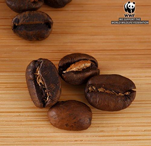 Cafs-Granell-Wild-Kopi-Luwak-Coffee-Whole-Beans-100grams-35oz