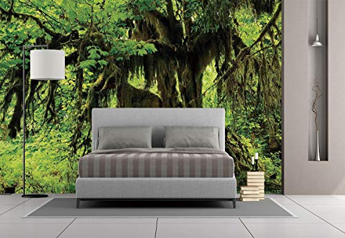 Large Wall Mural Sticker [ Rainforest Decorations,Tree with Moss in the Jungle Natural Life Zen Home Decor Silent Plants Pattern,Green Brown ] Self-adhesive Vinyl Wallpaper / Removable Modern Decorati (Hawkeyes Brown Iowa Football)