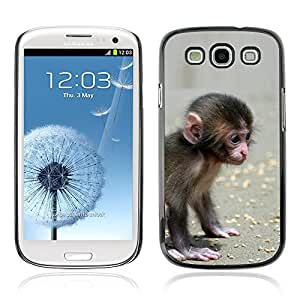 Graphic4You Cute Lilttle Monkey Animal Design Hard Case Cover for Samsung Galaxy S3 S III