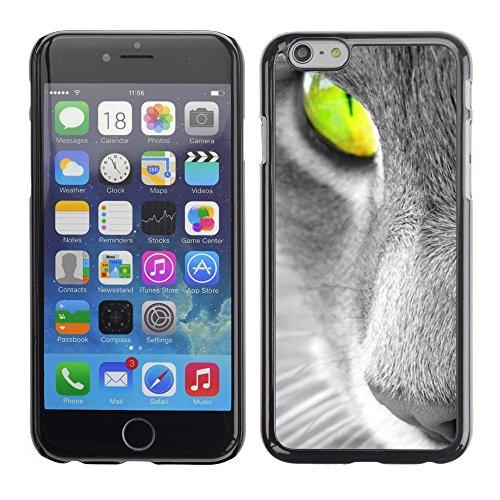 "Premio Sottile Slim Cassa Custodia Case Cover Shell // V00003378 chat vert yeux // Apple iPhone 6 6S 6G PLUS 5.5"""