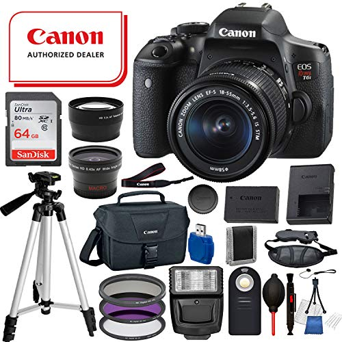Canon EOS Rebel T6i Digital SLR Camera with EF-S 18-55mm is STM USA (Black) 19PC Professional Bundle Package Deal –SanDisk 64gb SD Card + Canon Shoulder Bag + More