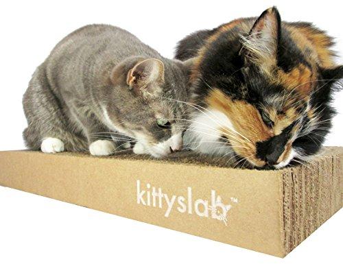 Kittyslab